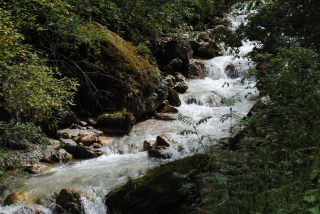 Alpine stream
